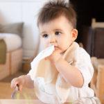 Lingettes lavables essentielles en coton bio – Pitigaïa