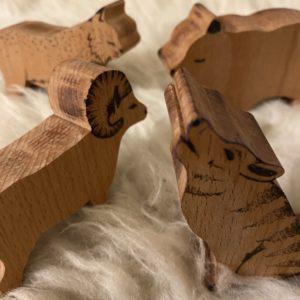 Les animaux d'hiver – La Mouette et le Choucas